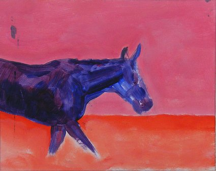 Horse, Unsaddled