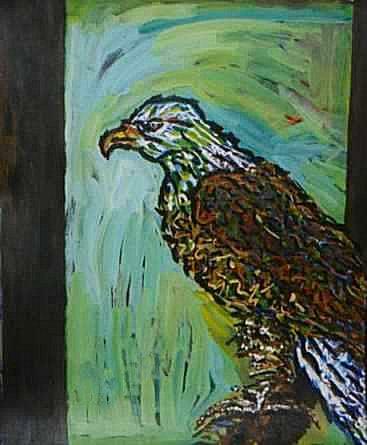 Eagle, Perched