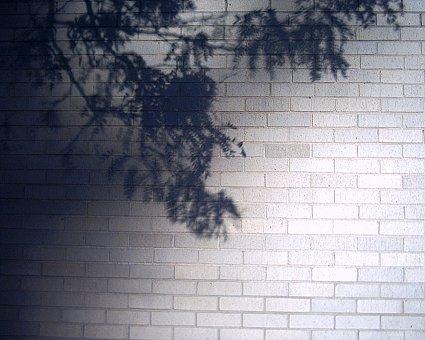kc wall 12