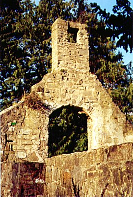 Palmerstown ruined church