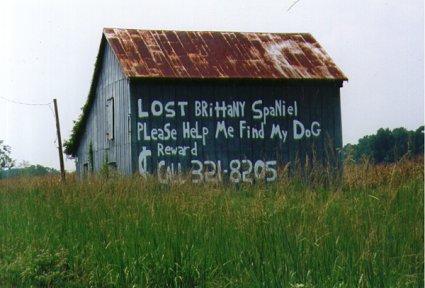 North Carolina: Lost Spaniel Notice on Barn